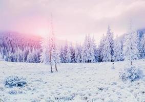 favoloso paesaggio invernale foto