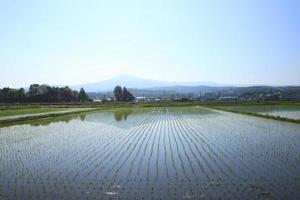 mt.himakami e paesaggio pastrale foto
