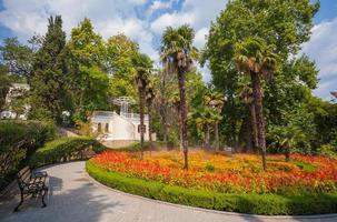 paesaggio del giardino con fontana foto