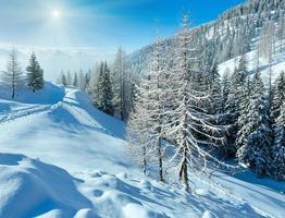 mattina d'inverno nebbioso paesaggio montano