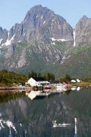 pittoresco paesaggio della campagna della Norvegia foto