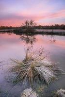 alba invernale foto