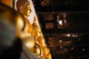 fila di buddha