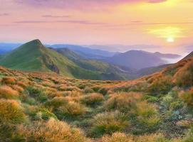 bellissimo paesaggio estivo in montagna foto