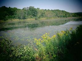 Lago del Cheshire foto