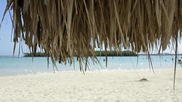 spiaggia di Boca Chica foto