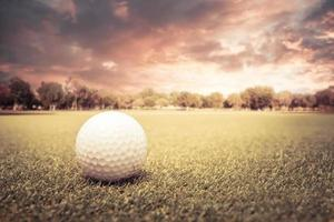 pallina da golf su un campo al tramonto foto