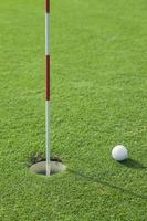 putter mette una pallina da golf sul buco nel verde foto