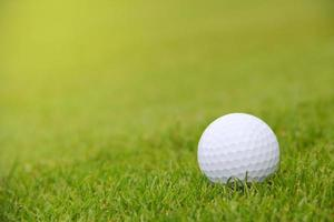 pallina da golf sul campo foto
