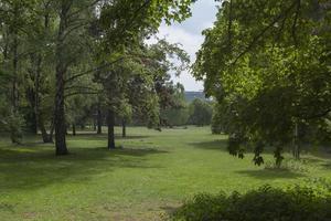 Berlino, parco Tiergarten foto