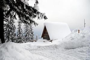 chalet di montagna in legno foto