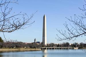 monumento a Washington in inverno foto