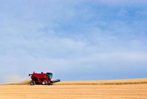 reinvia l'agricoltura foto