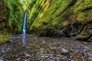 Oneonta inferiore cade nella gola del fiume Columbia, Oregon foto