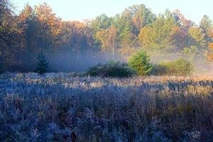 sollevamento della nebbia foto