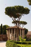 roma - tempio di vesta foto