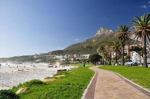 testa di leone vista da Camps Bay - Cape Town, sa foto