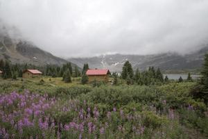 fiori selvatici e case di tronchi, montagne rocciose canadesi foto