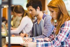 quattro compagni di classe concentrati che lavorano insieme foto