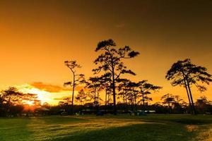 paesaggio tramonto invernale al parco nazionale di phukradung, asia thailandia