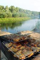 barbecue a base di carne di pollo cotta nella natura