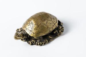 tartaruga in metallo dorato feng shui su bianco