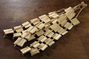 tofu congelato e essiccato foto