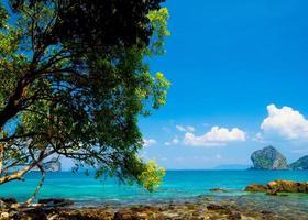 paesaggio acquatico