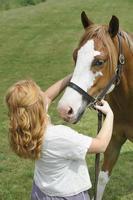 donna che registra la cavezza del cavallo, capelli rossi, vista posteriore foto
