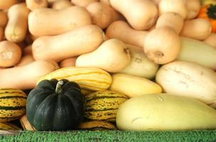 varietà di zucca e zucche in uno stand di fattoria