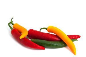 bunte chili schoten mit tautropfen
