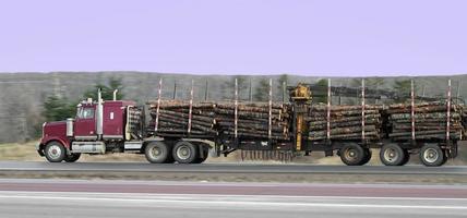 tronchi di camion foto