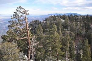 vista dalla tramvia aerea di palm springs in california
