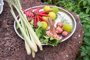 """cibo tailandese con erbe asiatiche e piccanti ingredienti """"tom yum"""" foto"""
