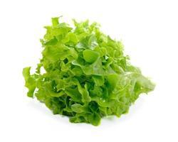 lattuga fresca isolata su fondo bianco foto