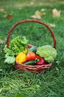 Merce nel carrello delle verdure su erba verde foto