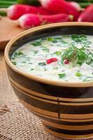 zuppa fredda di kefir di verdure con uova e verdure foto
