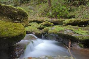 fiume di montagna foto