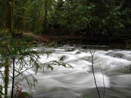 fiume liscio 1 foto