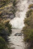 innalzamento del vapore dalla sorgente termale di Rotorua