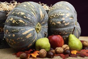 autunno autunno raccogliere zucche, noci e frutta. foto