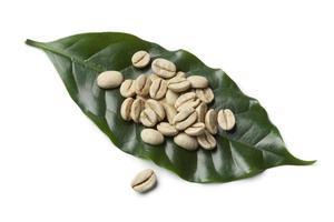 chicchi di caffè non arrostiti verdi indiani di malabar foto