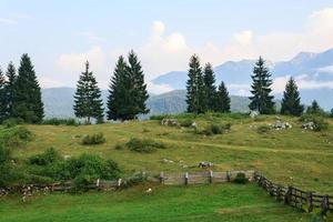 tipico paesaggio montano