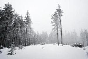 paesaggio invernale di montagna foto