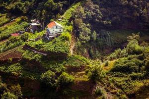 Madeira - paesaggio 05 foto