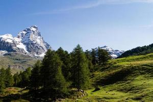 montagna cervino foto