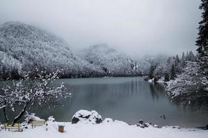 stagione invernale foto