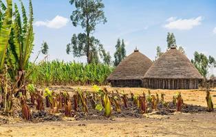 case tradizionali del villaggio in Etiopia