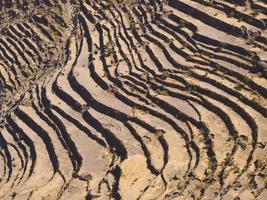 Yemen campi terrazze in inverno