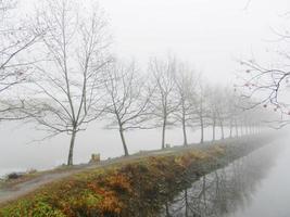 lago nebbioso